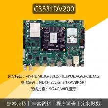 C3531DV200